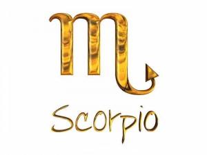 Мебелно обзавеждане и интериор- Скорпион